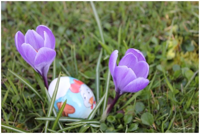 Unser Osterwochenende in Bildern 25./27.3.16