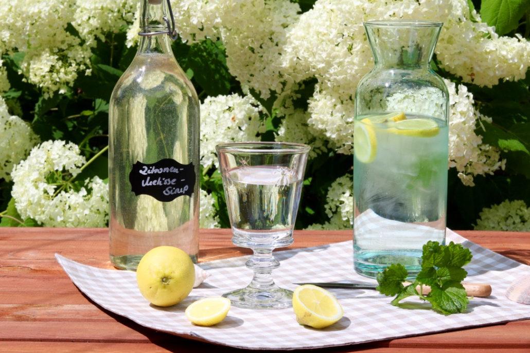 Zitronenmelisse Sirup selber machen