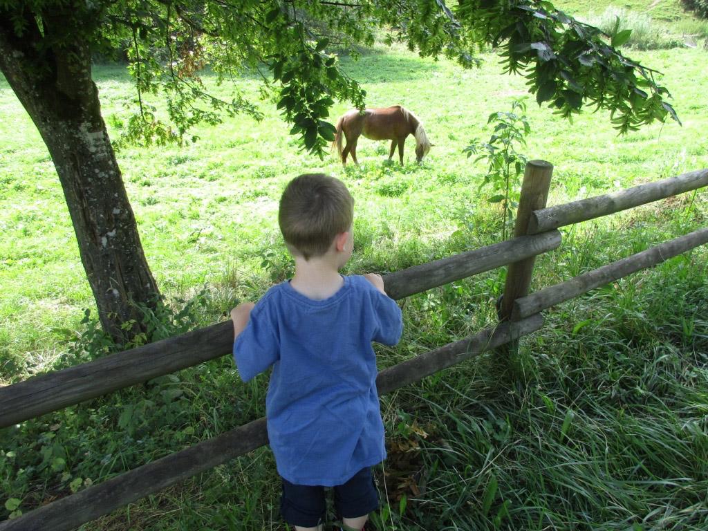Ausflugsziel-Eselsmühle-Siebenmühlental5