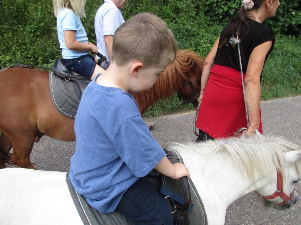 Ponyreiten-Eselsmühle