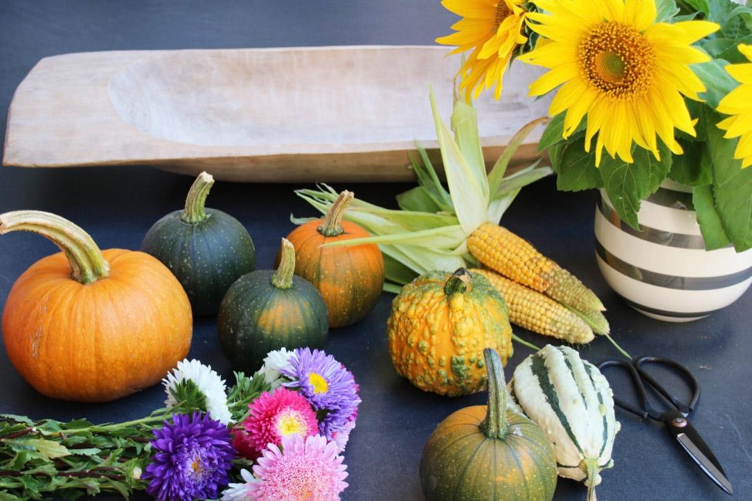 Kürbis,-Mais,-Astern-Sonnenblumen 5 Bilder für 5 Tage - Freitagslieblinge