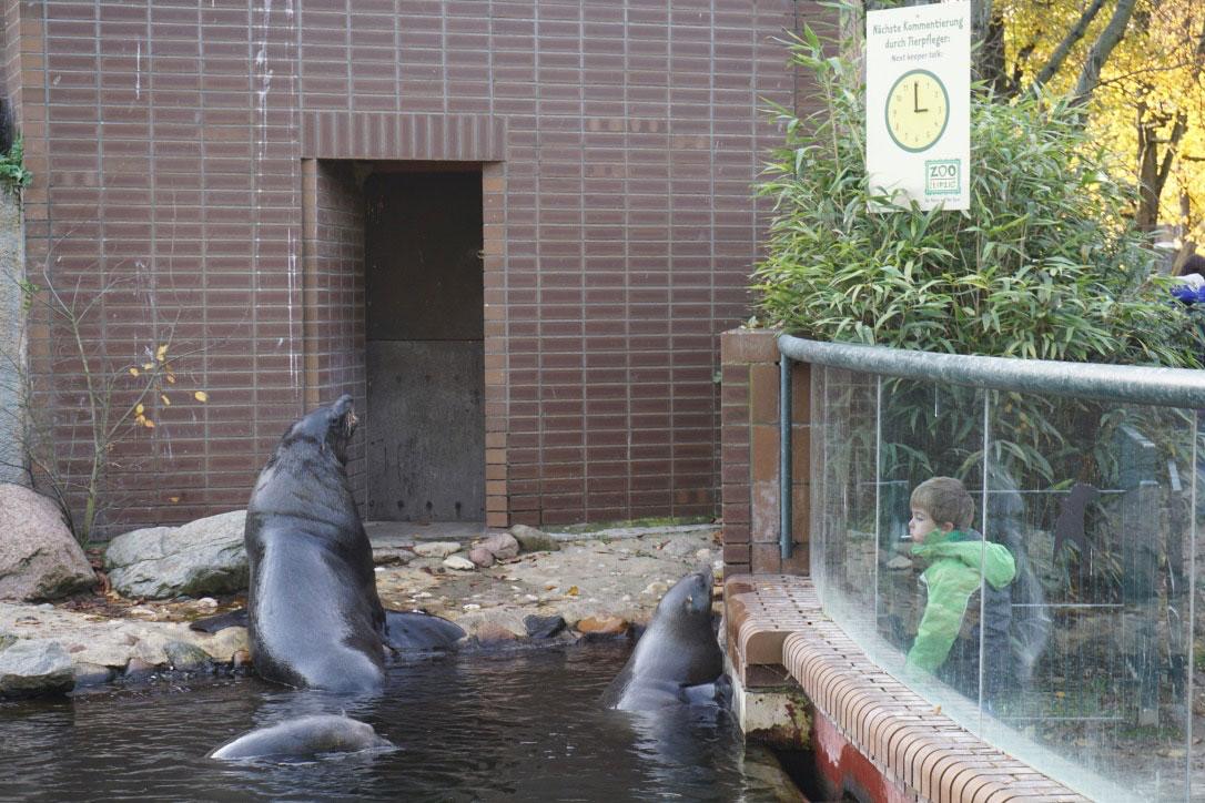 leipziger-zoo-blog-tagaustagein