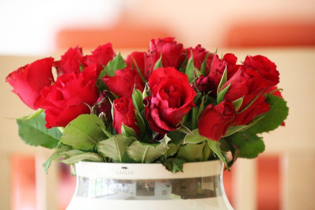 1. Blog-Geburtstag – Von Rückblick, Vorschau und Dankbarkeit