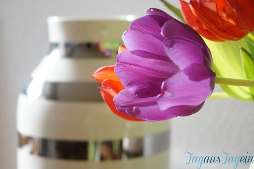 Omaggio Vasen von Kähler