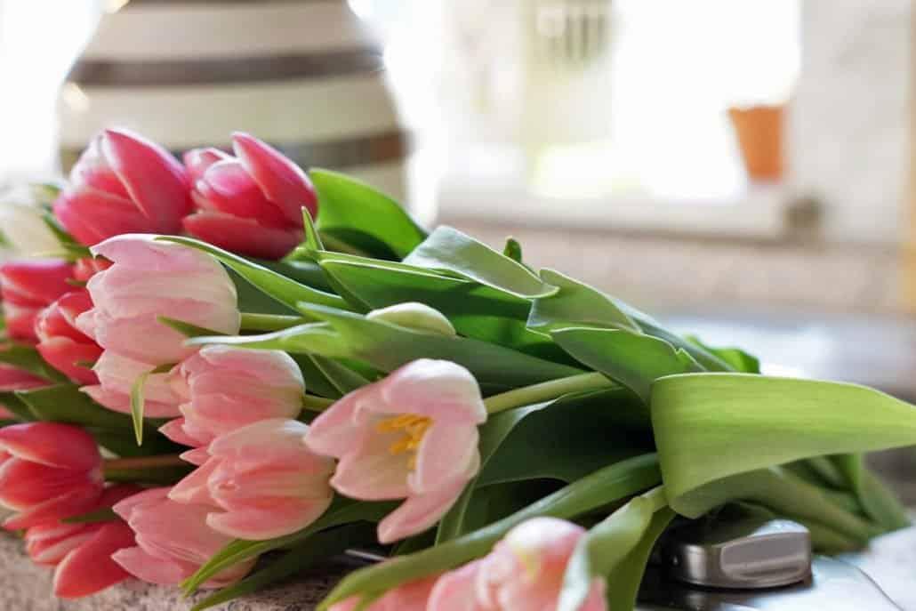 Tulpen Geburtstagsgeschenk