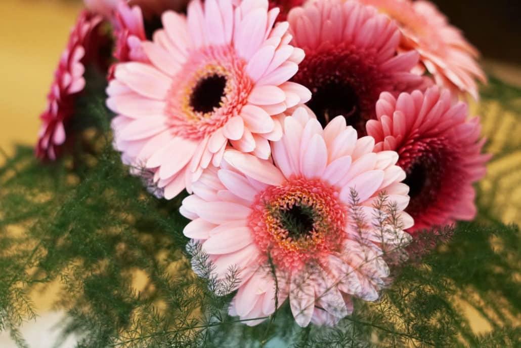 12-von-12-Alltagshaeppchen-Blumen-zum-Muttertag