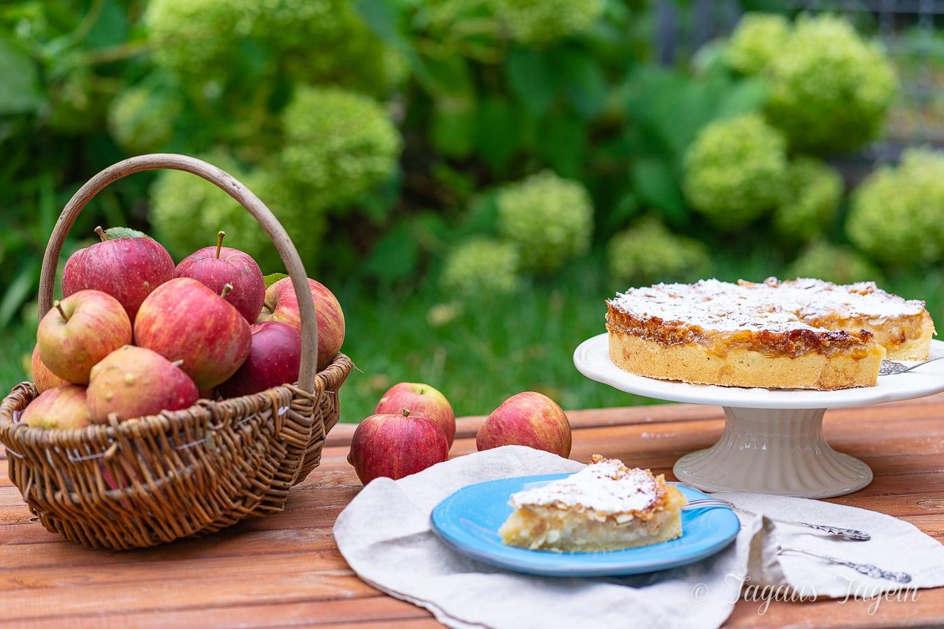 Einfacher Apfelkuchen mit Krokant – Thermomix® Rezept mit Video
