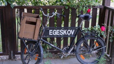 Wohnmobil Urlaub Dänemark - Insel Fünen