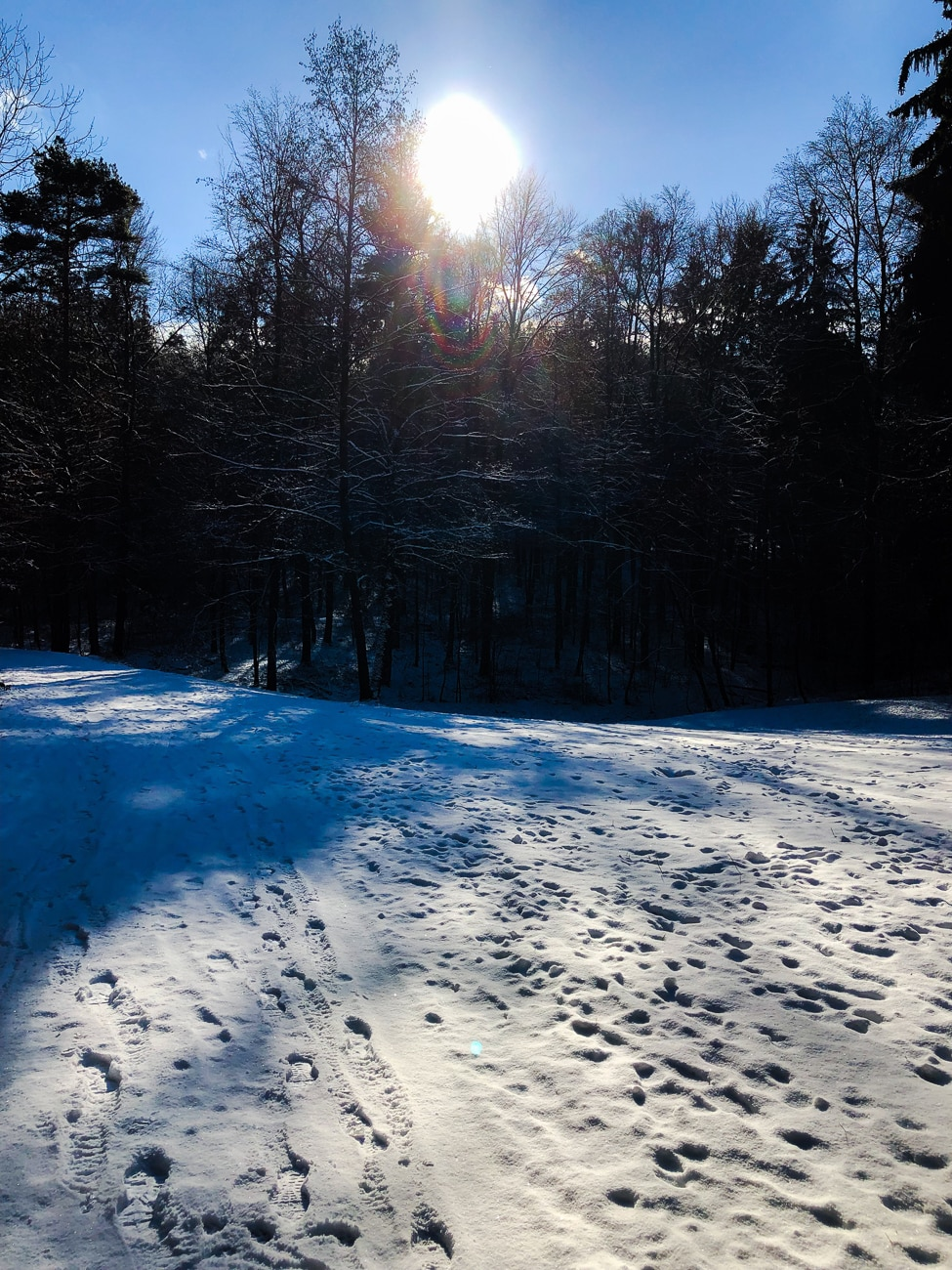 Wochenglück-Rückblick-Winterlandschaft