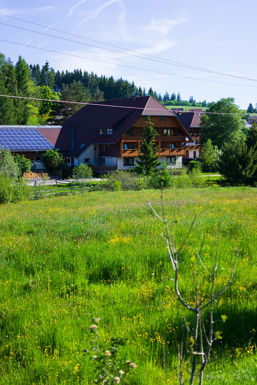 Schweizermichelhof St. Georgen