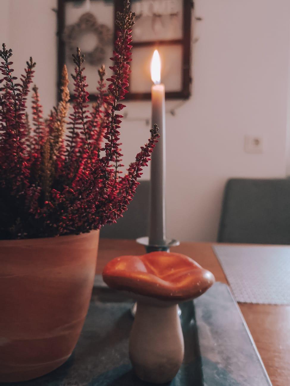 Herbstlieblinge Kerzen