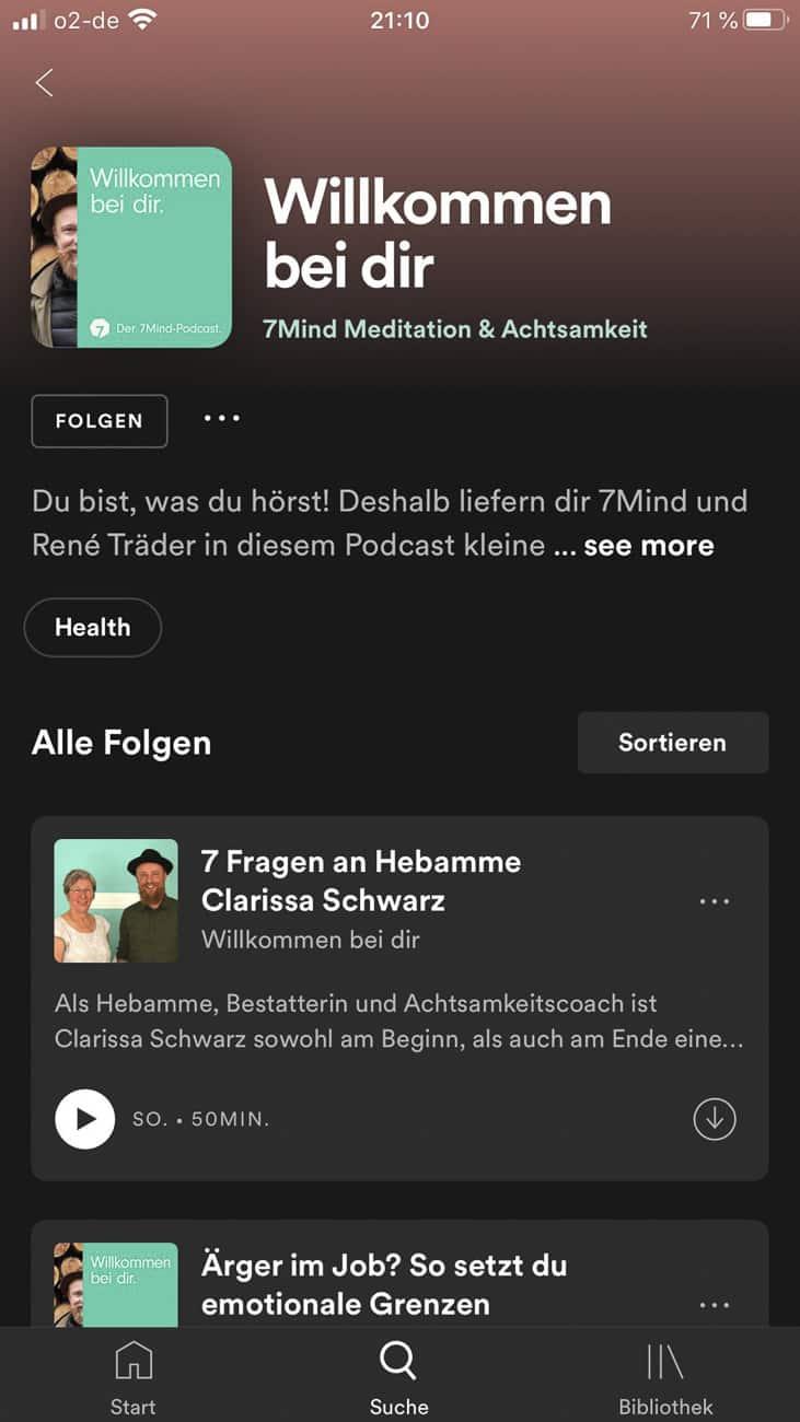Podcast Empfehlung 7 Mind