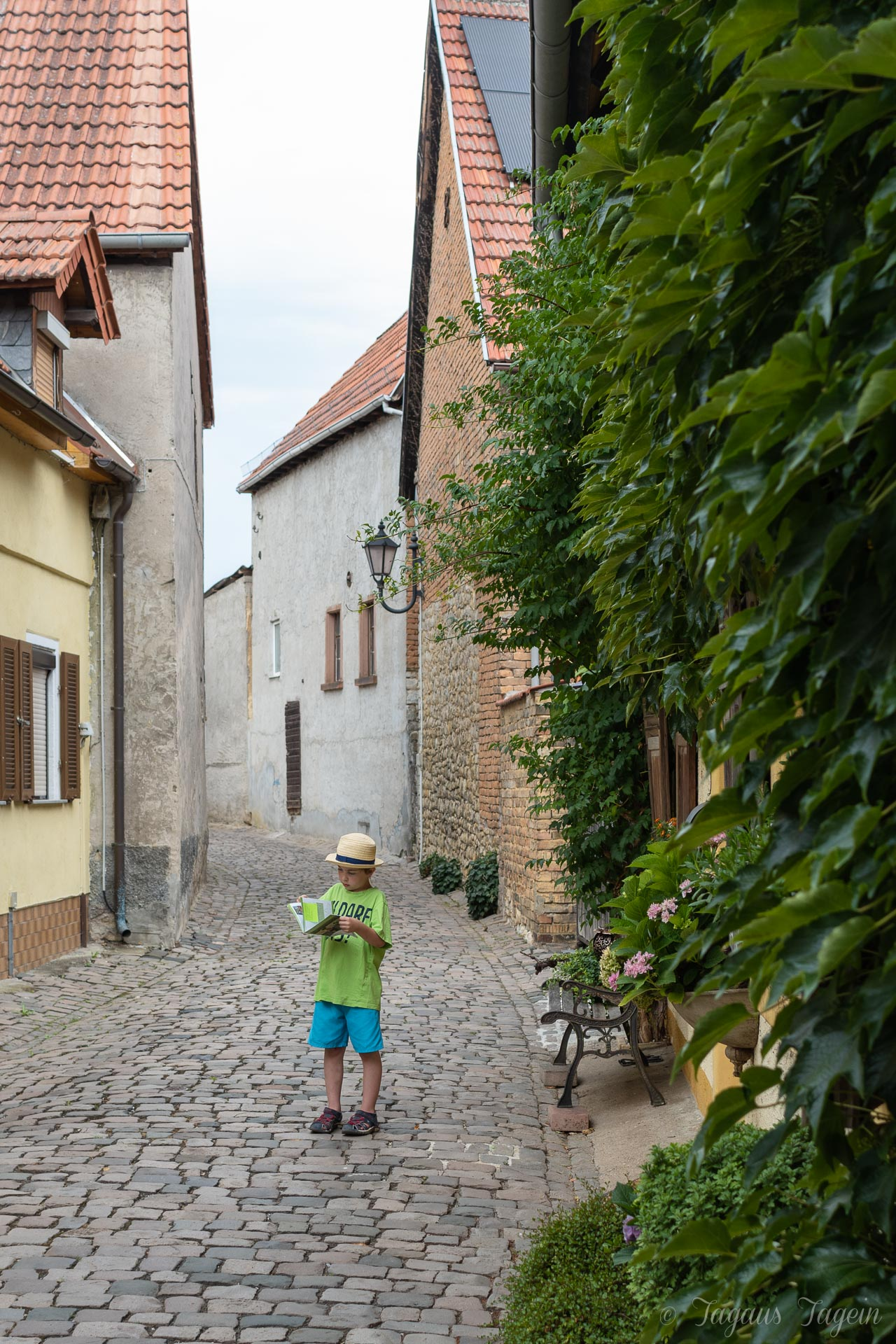 Bechtheim Wonnegau