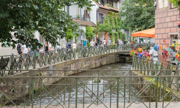 Stadterlebnis Pur – Familienausflug – Mit dem Wohnmobil nach Freiburg